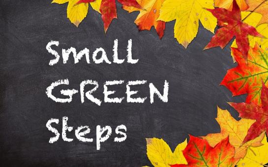 Picture of Small Green Steps - Level Three